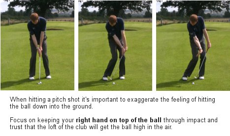 shot online golf tips
