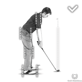 Golf Alignment: Shoulders, knees, hips all square to the target