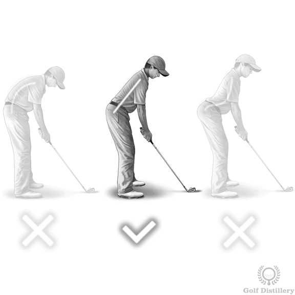 Perfect Golf Posture | Free Online Golf Tips